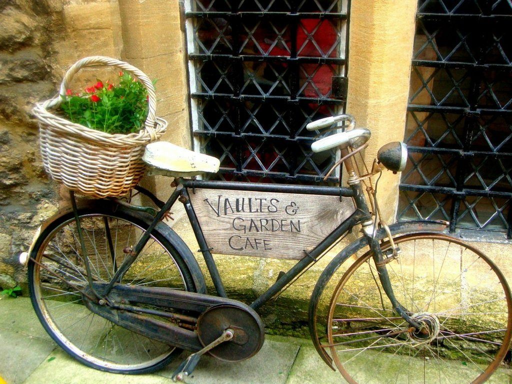 quirky oxford