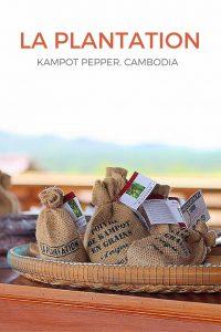 La Plantation, Visiting Pepper Farm in Kampot, Cambodia